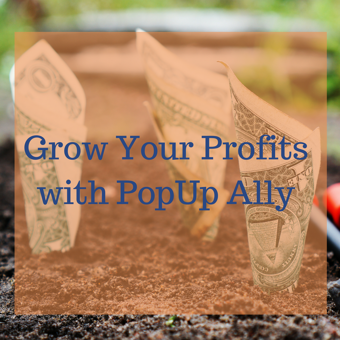How PopUp Ally can boost your business